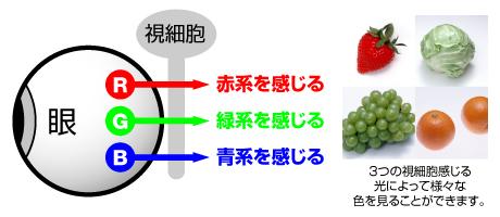 CUD-02-01.jpg